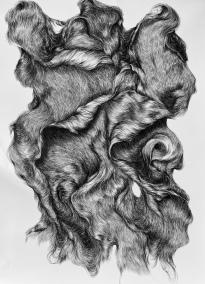 abundance 2, 210 x 150 cm, houtskool op papier